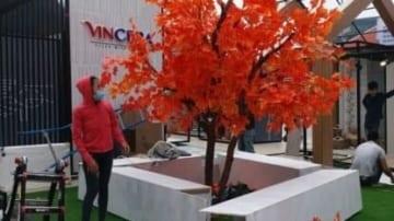 Cây Phong lá Đỏ Giả Cực Đẹp Tại HCM & Hà Nội