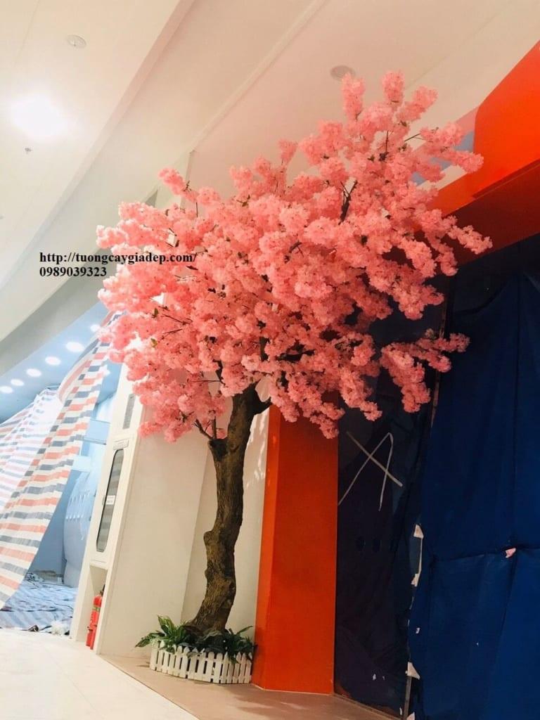 Cây hoa anh đào giả giá rẻ top1 đẹp - 29