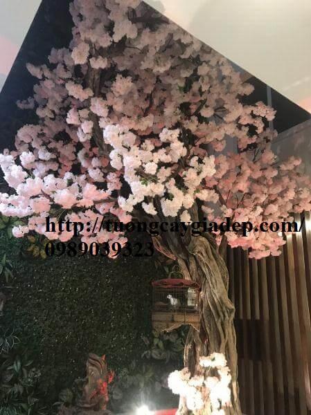 Cây hoa anh đào giả giá rẻ top1 đẹp - 13